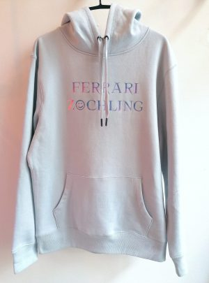 FZ SMILEY HOODIE DISCO PALE BLUE